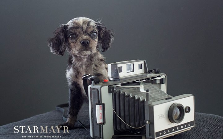 Berufshaftpflichtversicherung für Fotografen
